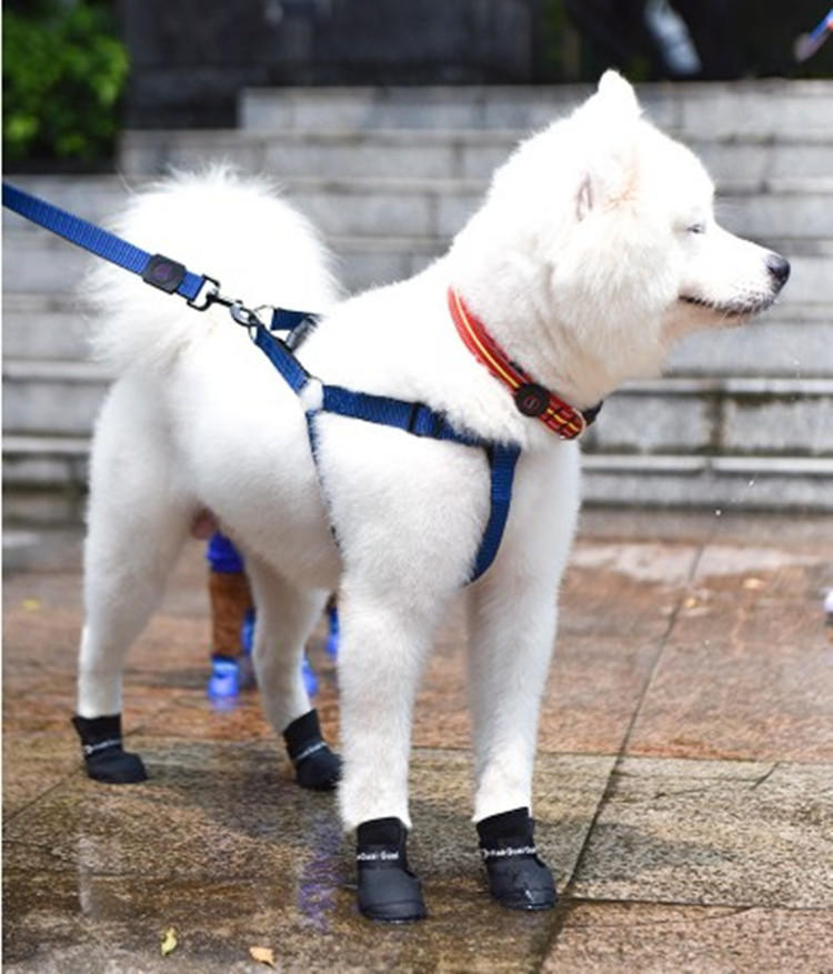 Silicone pet shoes dog shoes pet rainshoes waterproof shoes for dog
